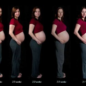 Haftalara Göre Fetusun Boyu Ve Kilosu
