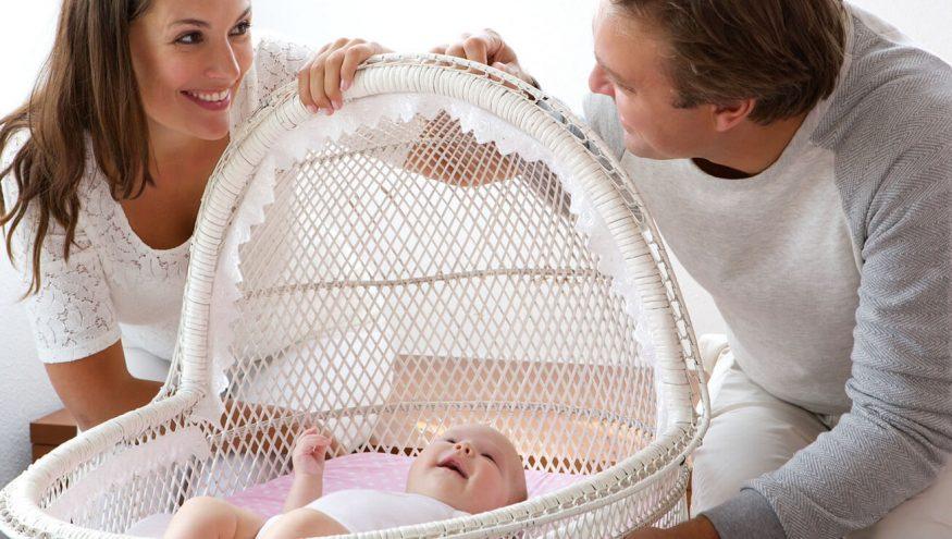 Taşıyıcı Annelik Nedir?