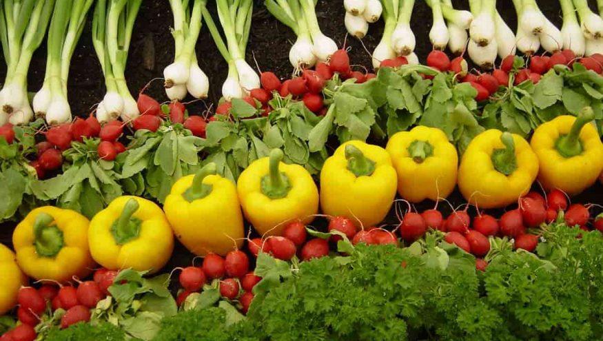 Bebeğiniz İçin Organik Gıdaların Önemi