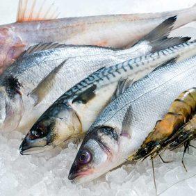Gebelik Döneminde Balık Tüketimi Nasıl Olmalı?
