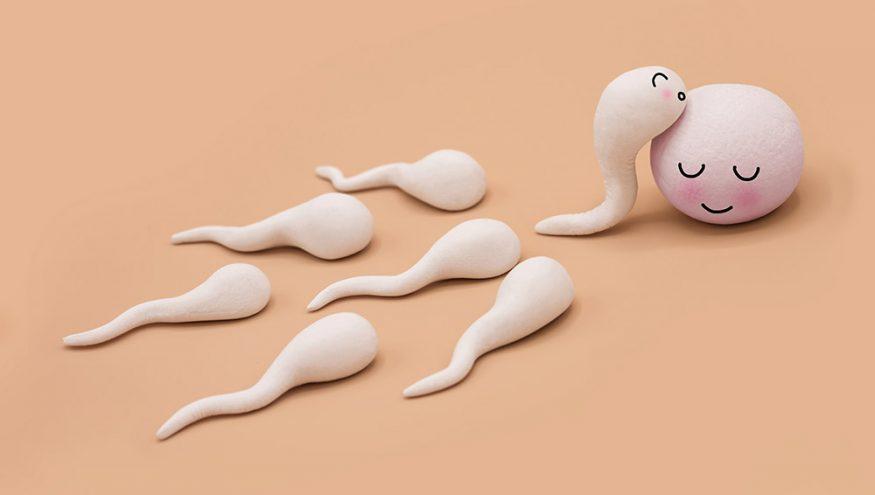 Sperm Alerjisi (Seminal Plazma Alerjisi)