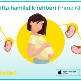 Doğum Kontrol Hapları ve Damar Tıkanıklığı Riski